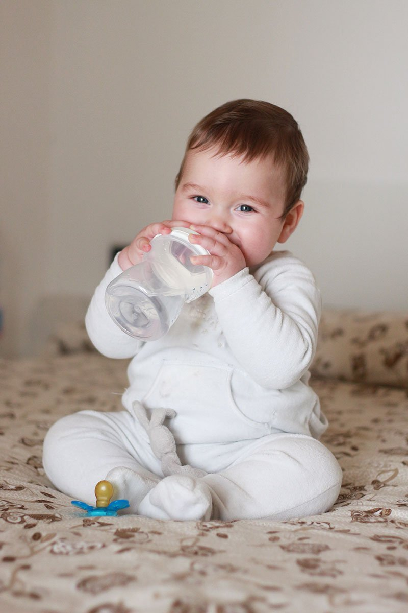 Vincy allattamento