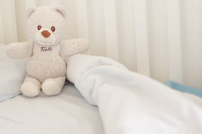 Una favola a lieto fine Teddy